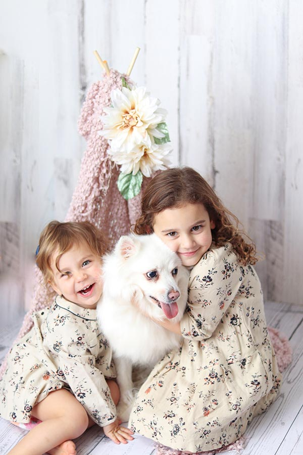 American Eskimo at City Tails NYC Doggy Day Care