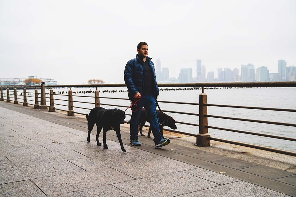 City Tails dog walker with the golden leash