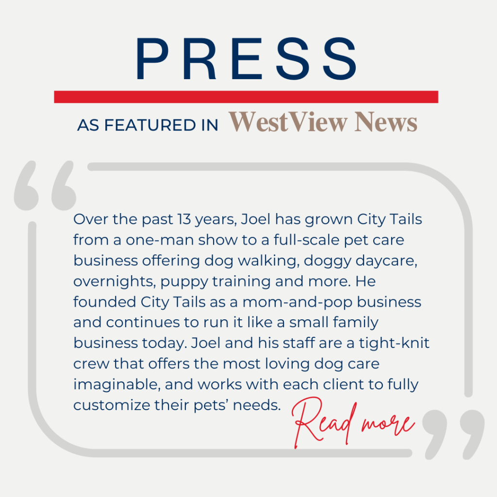 City Tails Dog Day Care featured in WestView News 5