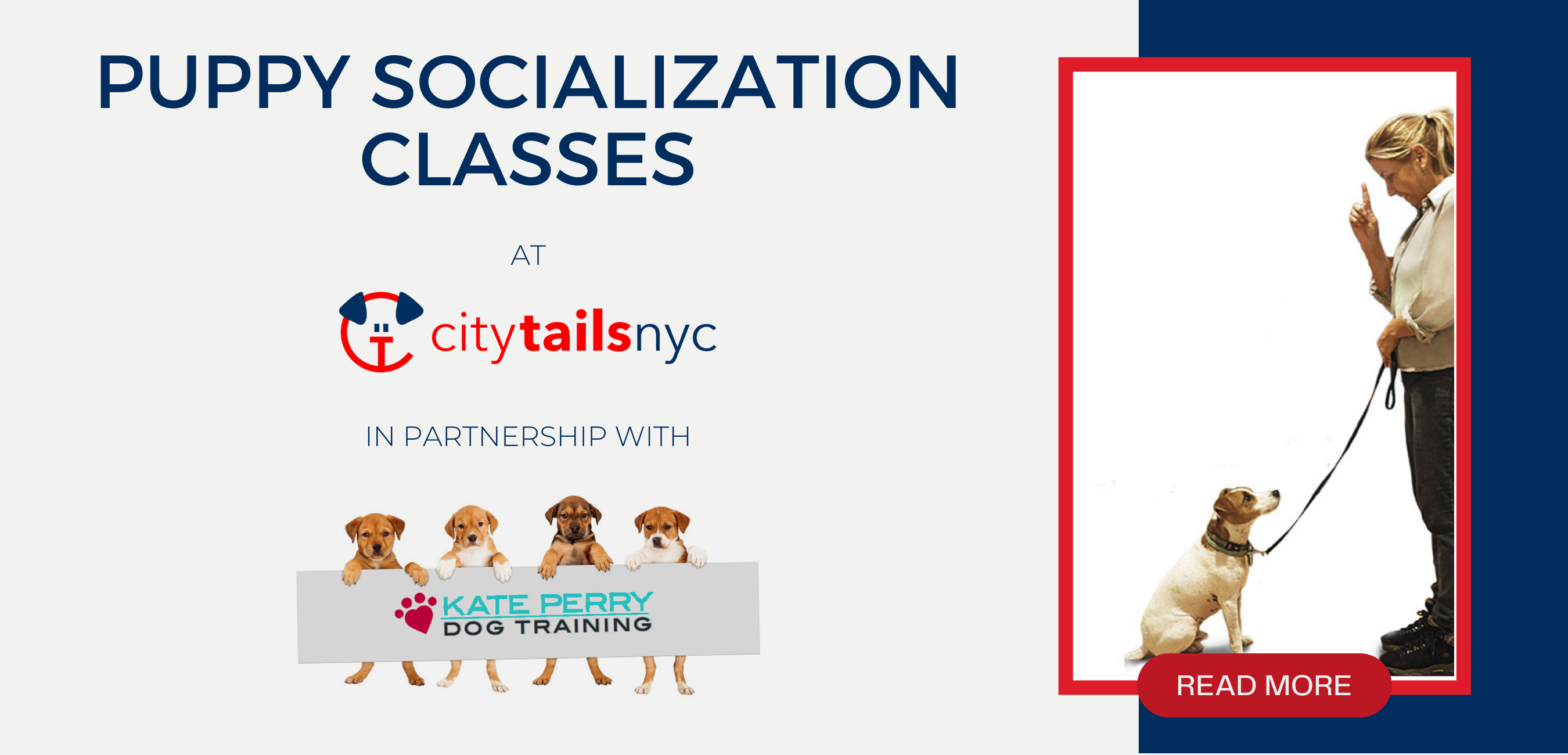 Puppy Socialization Class at City Tails dog daycare NYC
